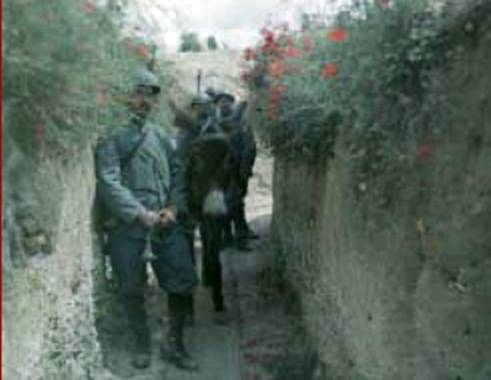 Flanders Trench - With Poppies